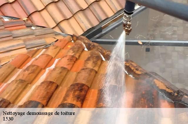 produit nettoyage toiture with produit nettoyage toiture simple nettoyage toiture with produit. Black Bedroom Furniture Sets. Home Design Ideas