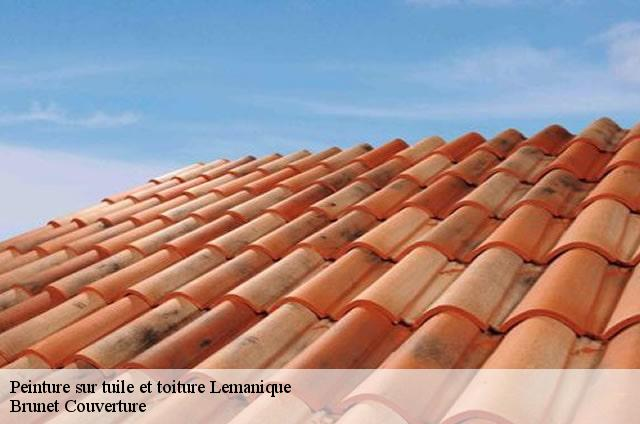 Peinture sur tuile Suisse region Lemanique tél: 076.711.43.48