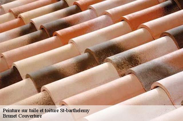Peinture sur tuile à St-barthelemy tél: 076.711.43.48